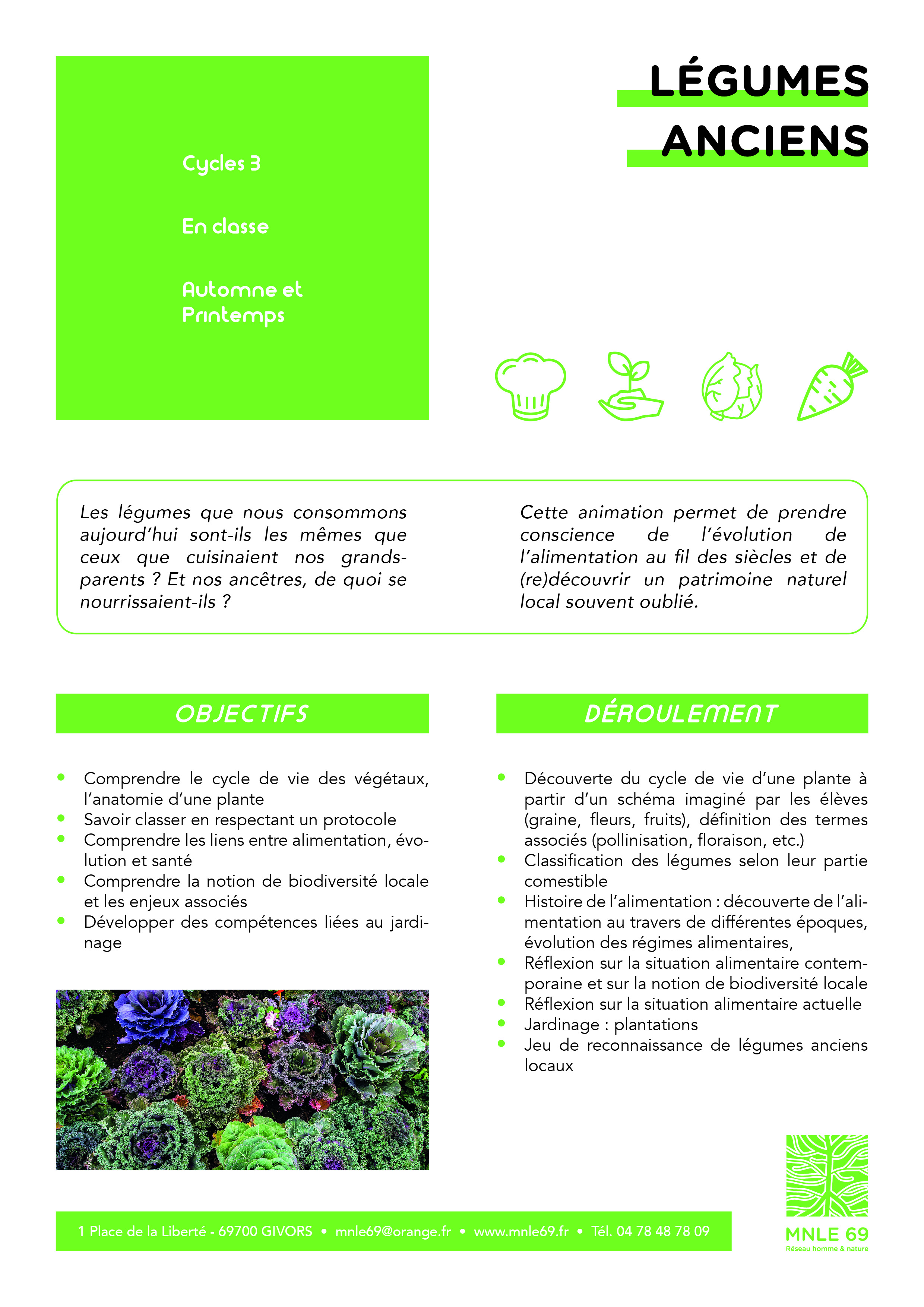 LegumesAnciens